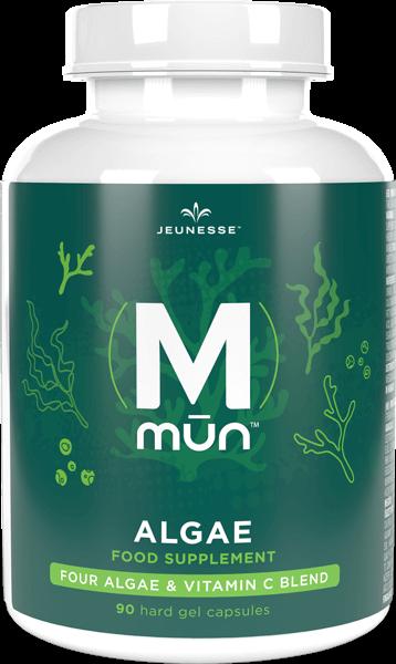 MMūn Algae