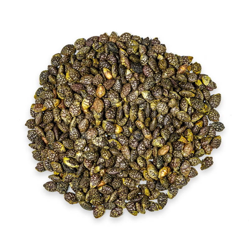 passionflower seed image